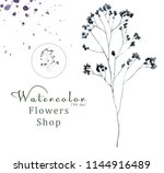 watercolor floral on white... | Shutterstock . vector #1144916489