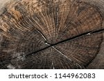 vintage brown obsolete hardwood ... | Shutterstock . vector #1144962083