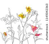 vector drawing flowers  floral...   Shutterstock .eps vector #1145042363