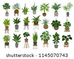 collection of different decor... | Shutterstock .eps vector #1145070743
