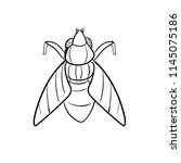 moth doodle icon outlune | Shutterstock .eps vector #1145075186