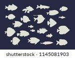 set of tropical fish. doodle... | Shutterstock . vector #1145081903