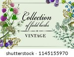 vintage card with the frame of ... | Shutterstock .eps vector #1145155970