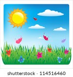 summer sunny day. flowers and... | Shutterstock .eps vector #114516460