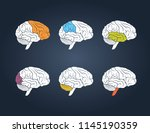 profile view of a human brain.... | Shutterstock .eps vector #1145190359