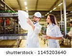 a man working in a white lab... | Shutterstock . vector #1145203640