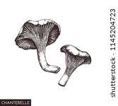 vector illustration of hand... | Shutterstock .eps vector #1145204723
