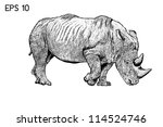 Rhino Drawing With Eps 10 Vector