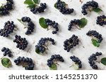 aronia  commonly known as the... | Shutterstock . vector #1145251370