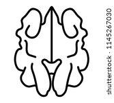 walnuts kernel. vector flat... | Shutterstock .eps vector #1145267030