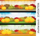 autumn banners with pumpkins ... | Shutterstock .eps vector #1145267336