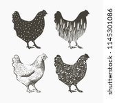 realistic chicken logo.... | Shutterstock .eps vector #1145301086