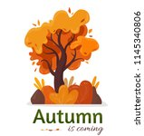 autumn in coming. yellow tree.... | Shutterstock .eps vector #1145340806