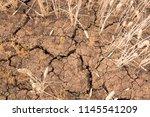 deep cracks in dry soil during... | Shutterstock . vector #1145541209