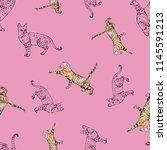 cats sketch  illustration... | Shutterstock . vector #1145591213
