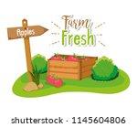 farm fresh concept | Shutterstock .eps vector #1145604806