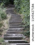 Close up outdoor view of a concrete staircase located in a french public park. Vegetation and green leaves on each side. Pattern of grey steps. Path in the nature. Leading way to the hill top.
