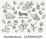 collection of cartoon berries.... | Shutterstock .eps vector #1145644229