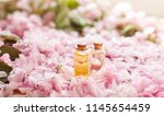 selection of essential oils | Shutterstock . vector #1145654459