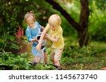 cute little boy and girl... | Shutterstock . vector #1145673740