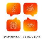 eye  neurology brain and... | Shutterstock .eps vector #1145721146