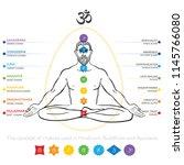 chakras system of human body  ... | Shutterstock .eps vector #1145766080