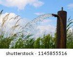 wellspring next to a lake | Shutterstock . vector #1145855516