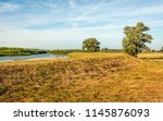 picturesque image of the dutch... | Shutterstock . vector #1145876093