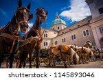 horses in salzburg  historic... | Shutterstock . vector #1145893046