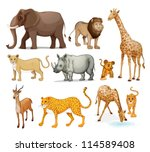 illustration of animals in on a ... | Shutterstock .eps vector #114589408