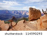 grand canyon national park ... | Shutterstock . vector #114590293