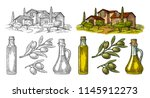 set olive. bottle and jug glass ... | Shutterstock .eps vector #1145912273