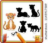matching shadow of cheetah... | Shutterstock .eps vector #1145917589
