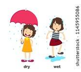 opposite dry and wet vector...   Shutterstock .eps vector #1145955086