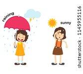 opposite raining and sunny...   Shutterstock .eps vector #1145955116