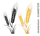ears of wheat  barley or rye... | Shutterstock .eps vector #1146007109