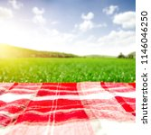 summer photo of empty blanket... | Shutterstock . vector #1146046250