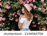 portrait from back of gorgeous... | Shutterstock . vector #1146064706