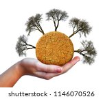 dry planet with cracked soil... | Shutterstock . vector #1146070526
