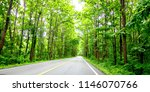 asphalt road and green tree in... | Shutterstock . vector #1146070766
