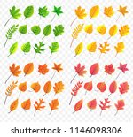 autumn leaves collection  | Shutterstock .eps vector #1146098306