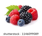 wild berry with leaf | Shutterstock . vector #1146099089