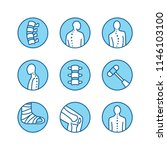 spine  backbone line icons.... | Shutterstock .eps vector #1146103100
