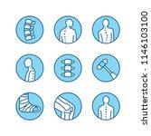 spine  backbone line icons....   Shutterstock .eps vector #1146103100