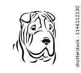 shar pei dog   isolated vector... | Shutterstock .eps vector #1146112130