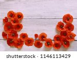 red poppies flowers on wooden...   Shutterstock . vector #1146113429