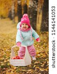 little girl with autumn harvest ... | Shutterstock . vector #1146141053