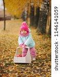 little girl with autumn harvest ... | Shutterstock . vector #1146141059