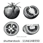 tomatoes hand draw vintage clip ... | Shutterstock .eps vector #1146148550