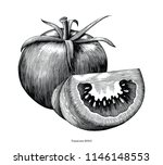 tomatoes hand draw vintage clip ... | Shutterstock .eps vector #1146148553